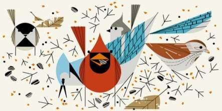 birdfeeders1